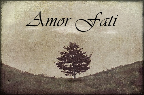 amor-fati-3
